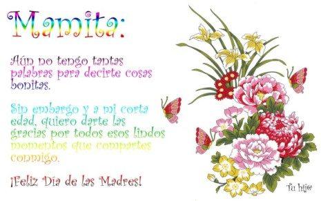Dia de las Madres Panamá 8 de Mayo (7)